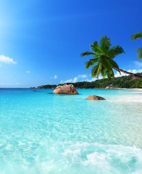 Morje, pesek, sonce... vse v najlepši obliki, Tur Tur Turizem