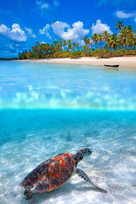 Neverjetne plaže, morje in sonce obiščite s Tur Tur Turizem
