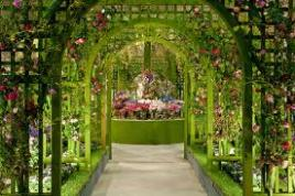 Čarobni vrtovi Tullna s Tur Tur Turizem bodo nepozabni